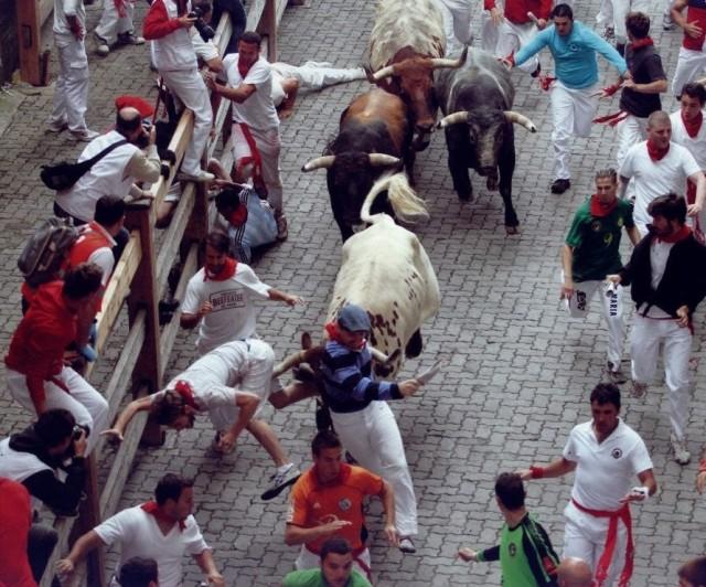 Steer hits Bill Hillmann